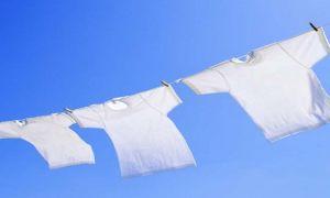Как отбелить белую футболку и майку не выходя из дома