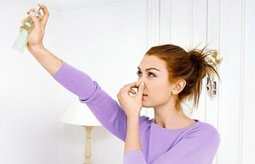 Дезодорация молока в домашних условиях - Дом и гараж
