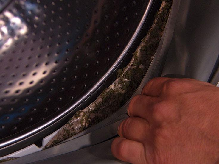 Так выглядит запущен грибок и плесень в стиральной машинке.