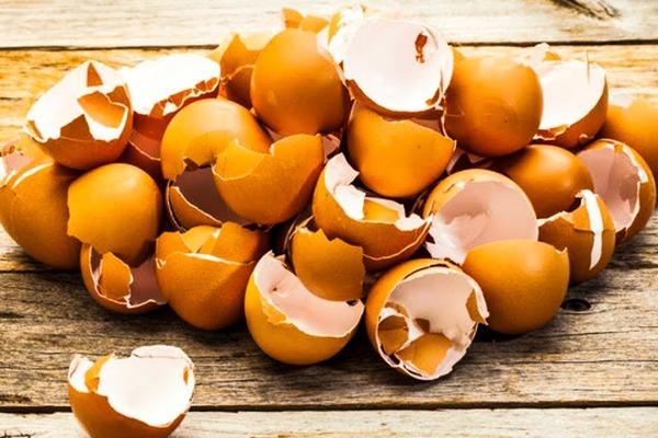Очищаем мельхиор яичной скарлупой
